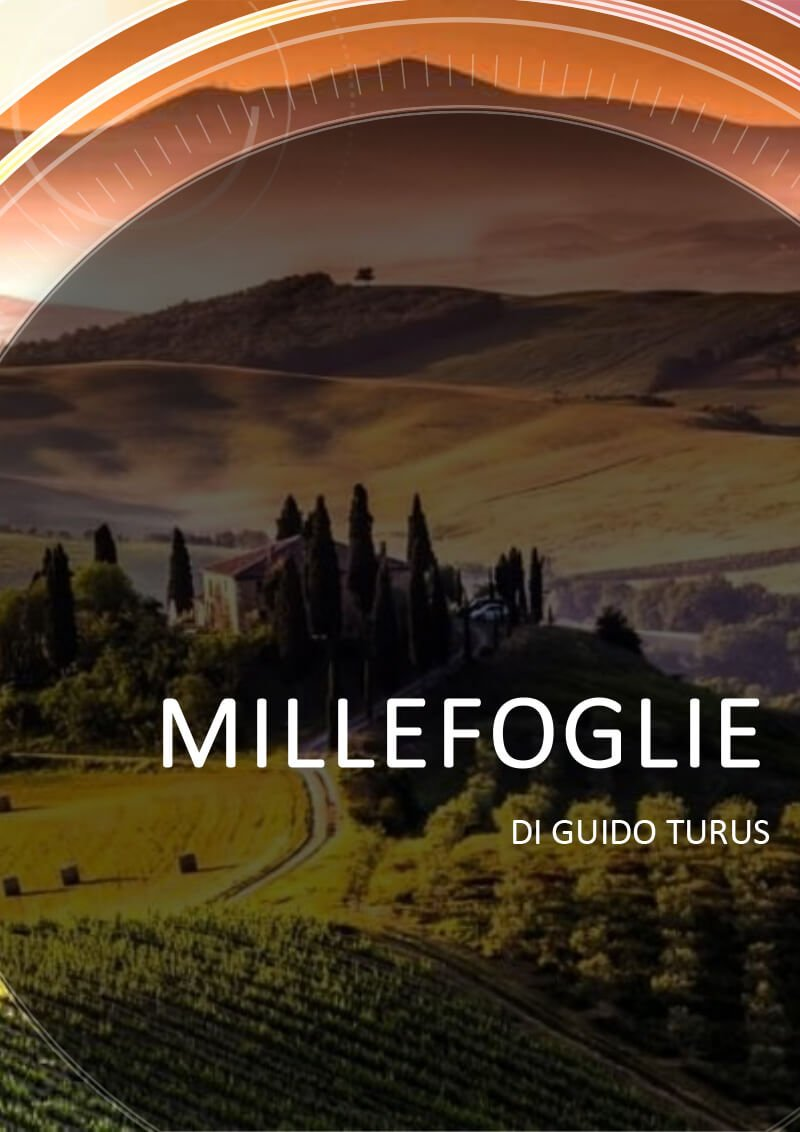 Millefoglie-Wellsee-Production-Portfolio